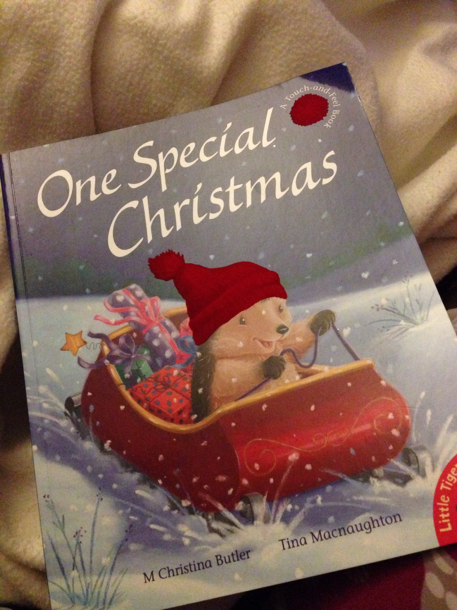 """One Special Christmas"" book for bedtime for a toddler in the week before Christmas reviewed"