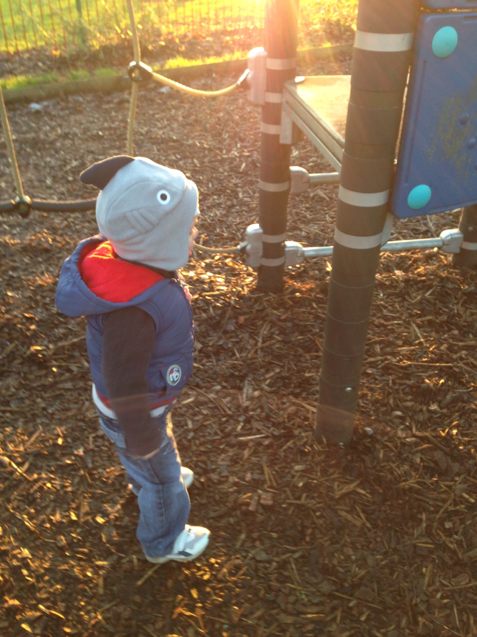 fun at the park wearing a shark hat