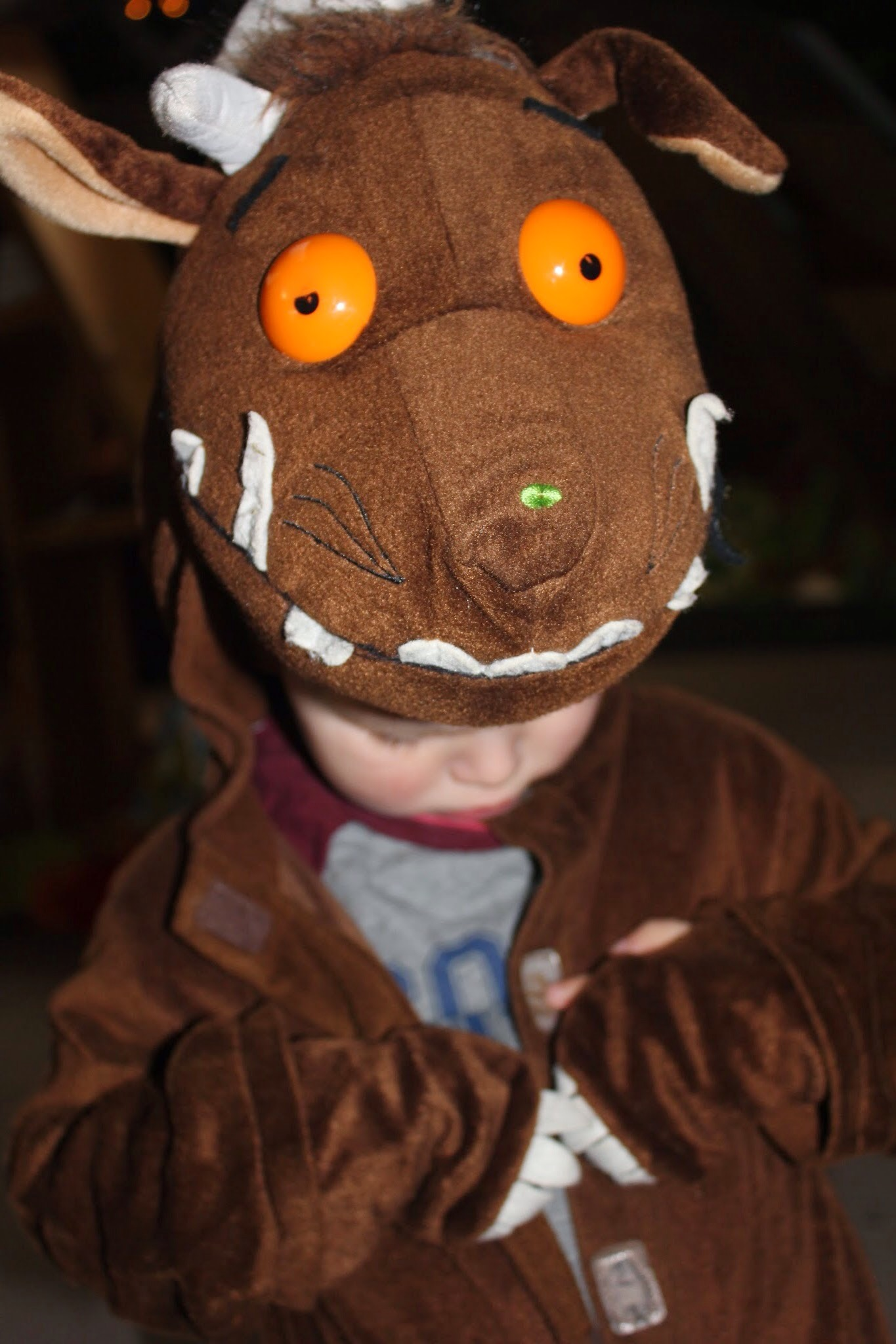 boy dressed as gruffalo