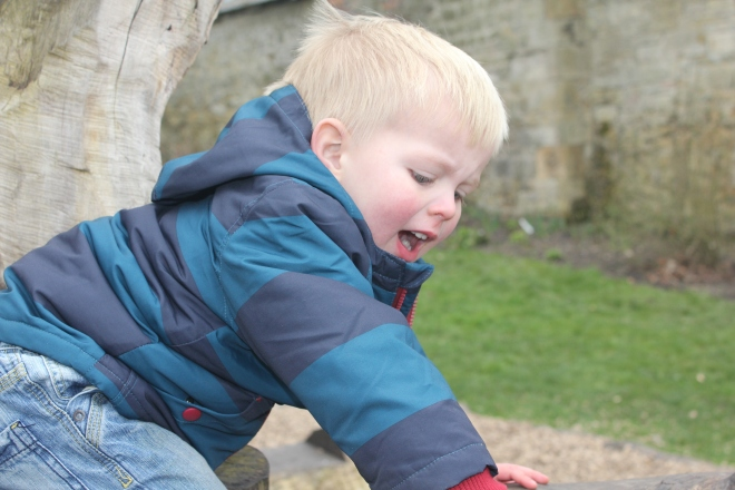toddler smiling on log climbing frame at seaton delaval hall