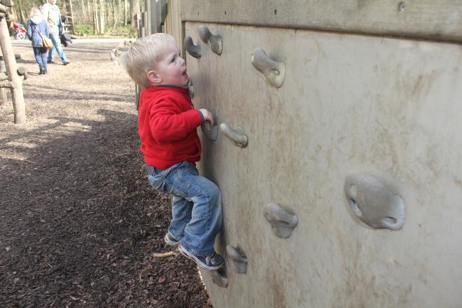 toddler climbing at Wallington