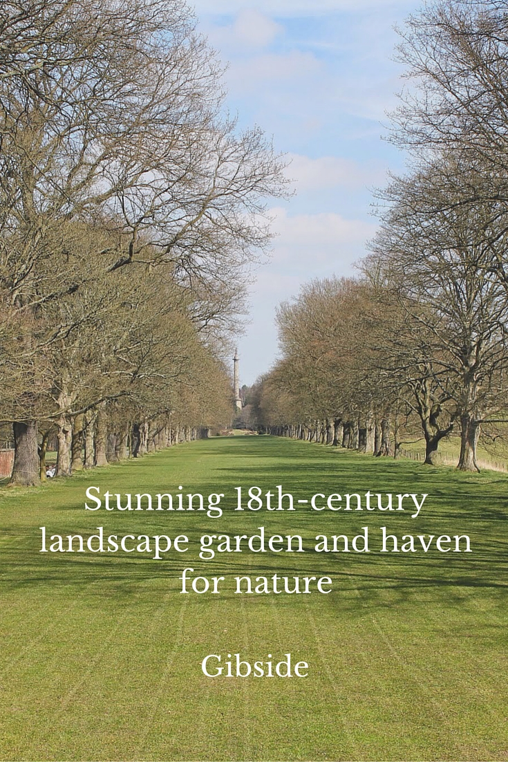 Stunning 18th-century landscape garden and haven for nature - gibside