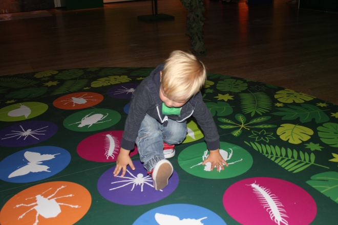 twister spineless exhibit great north museum