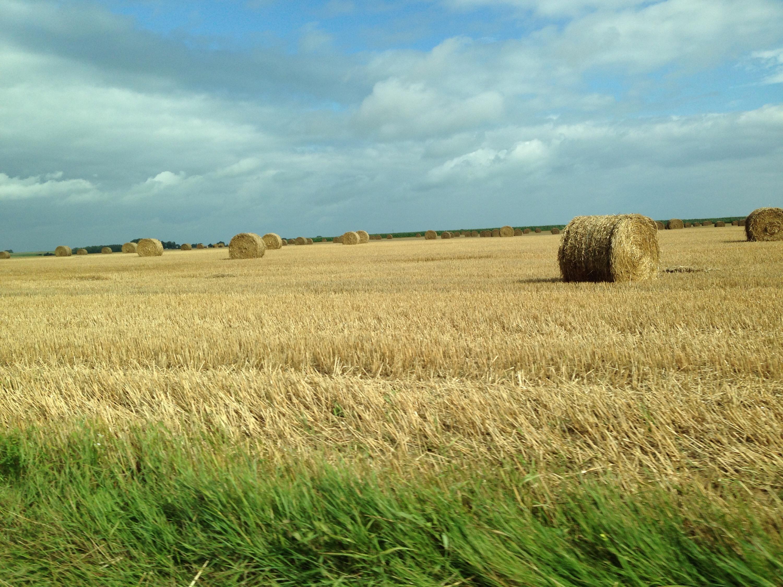 french farmland normandy france