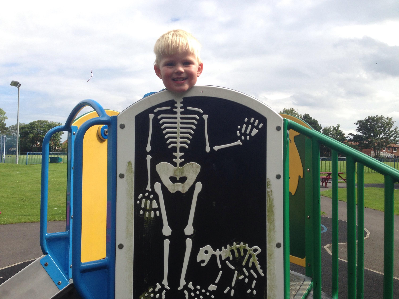 skeleton fun john willie sams park north tyneside