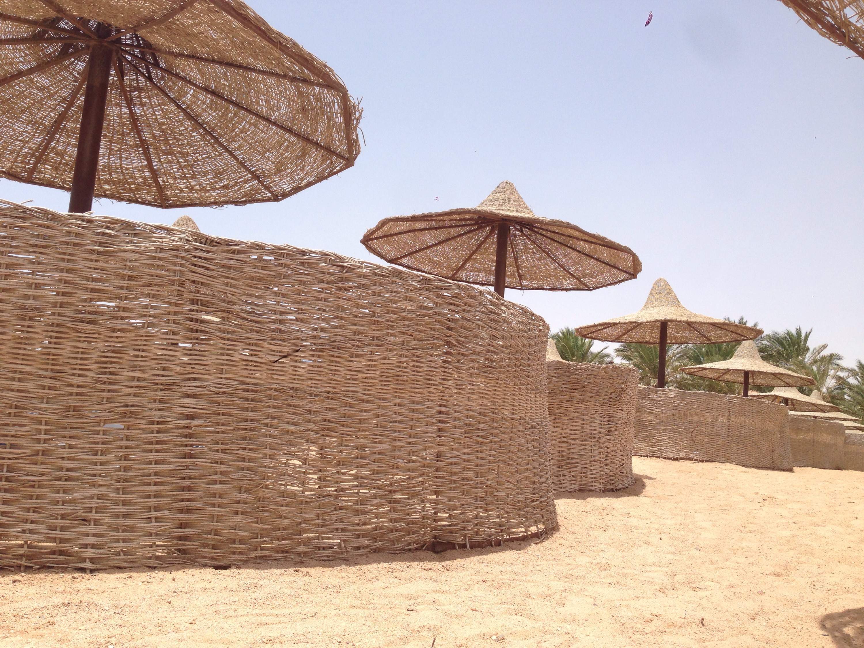 sun umbrellas parasols beach egypt