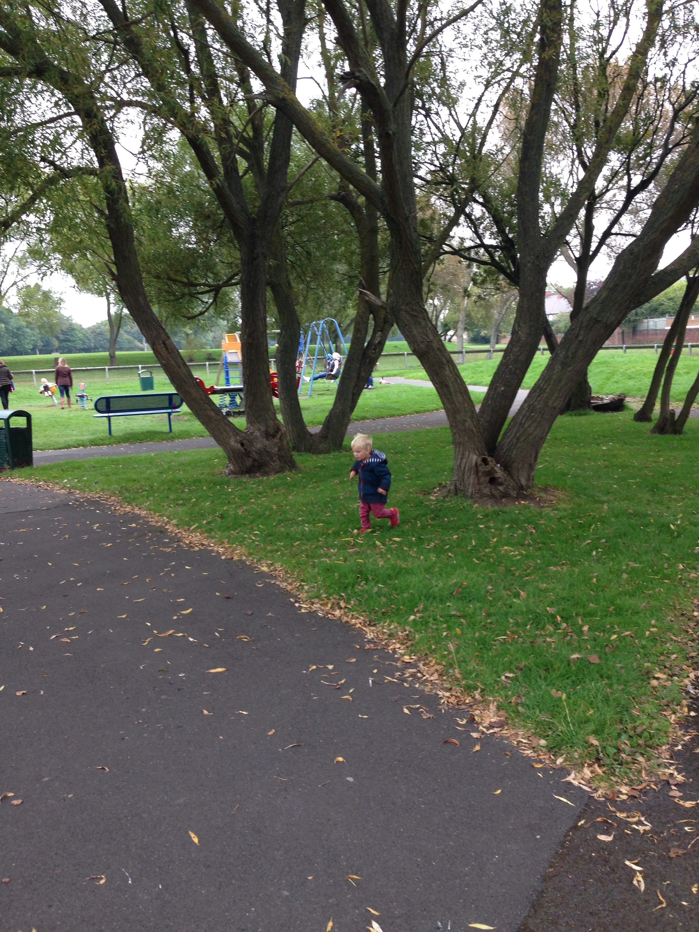churchil playing fields playground in north tyneside trees