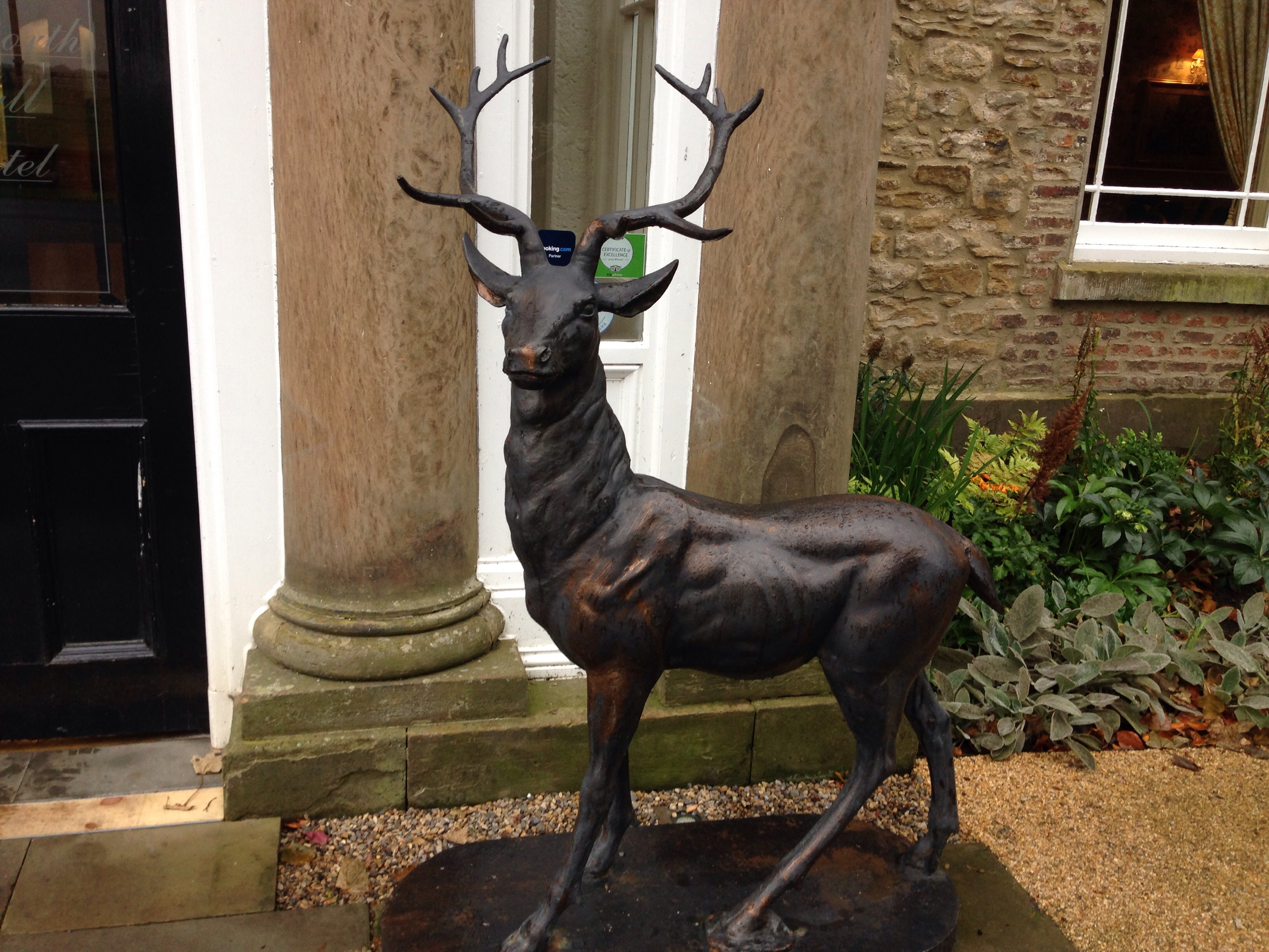 best western whitworth hall country park hotel stag