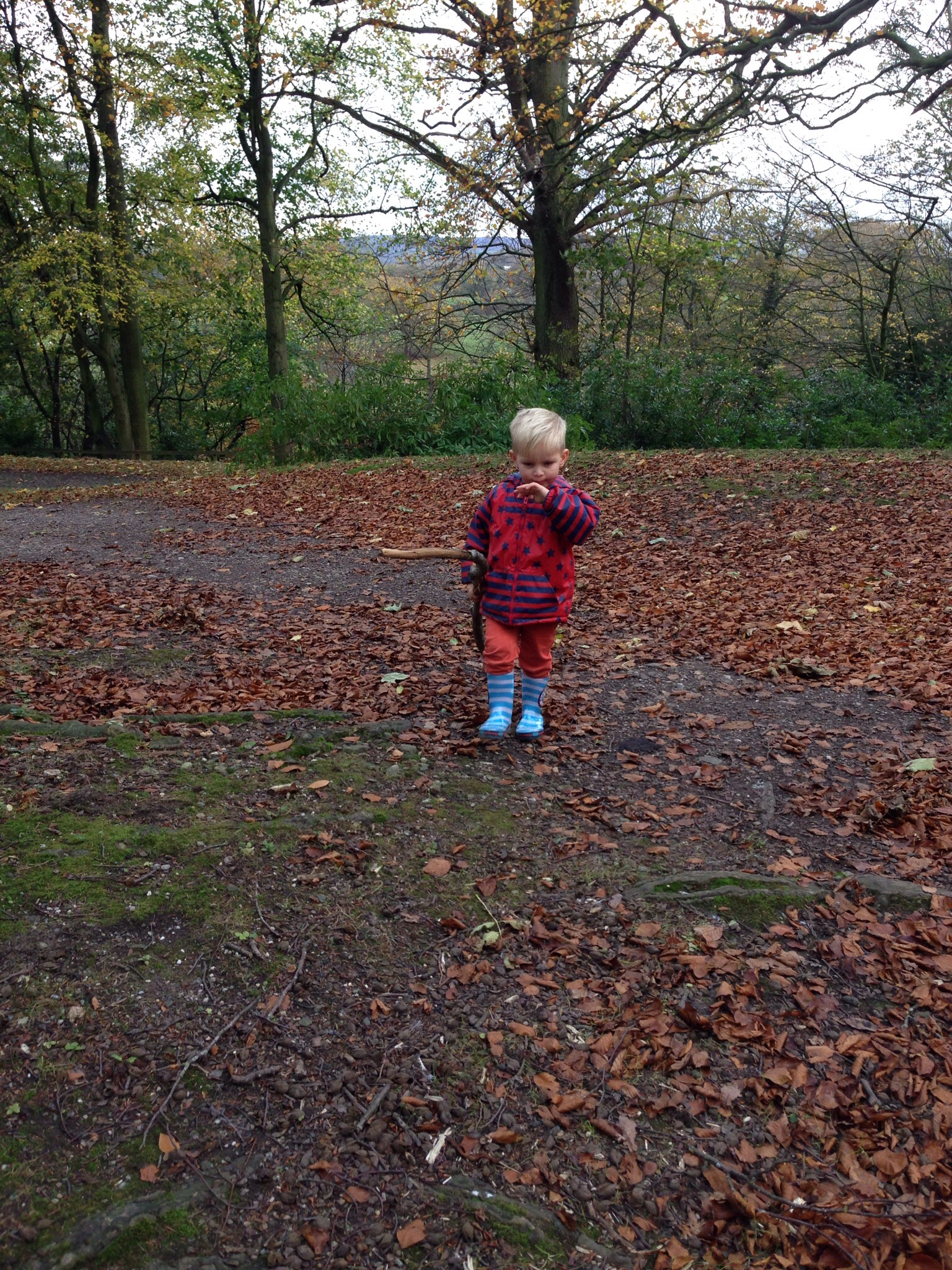 a day out with a toddler at erddig