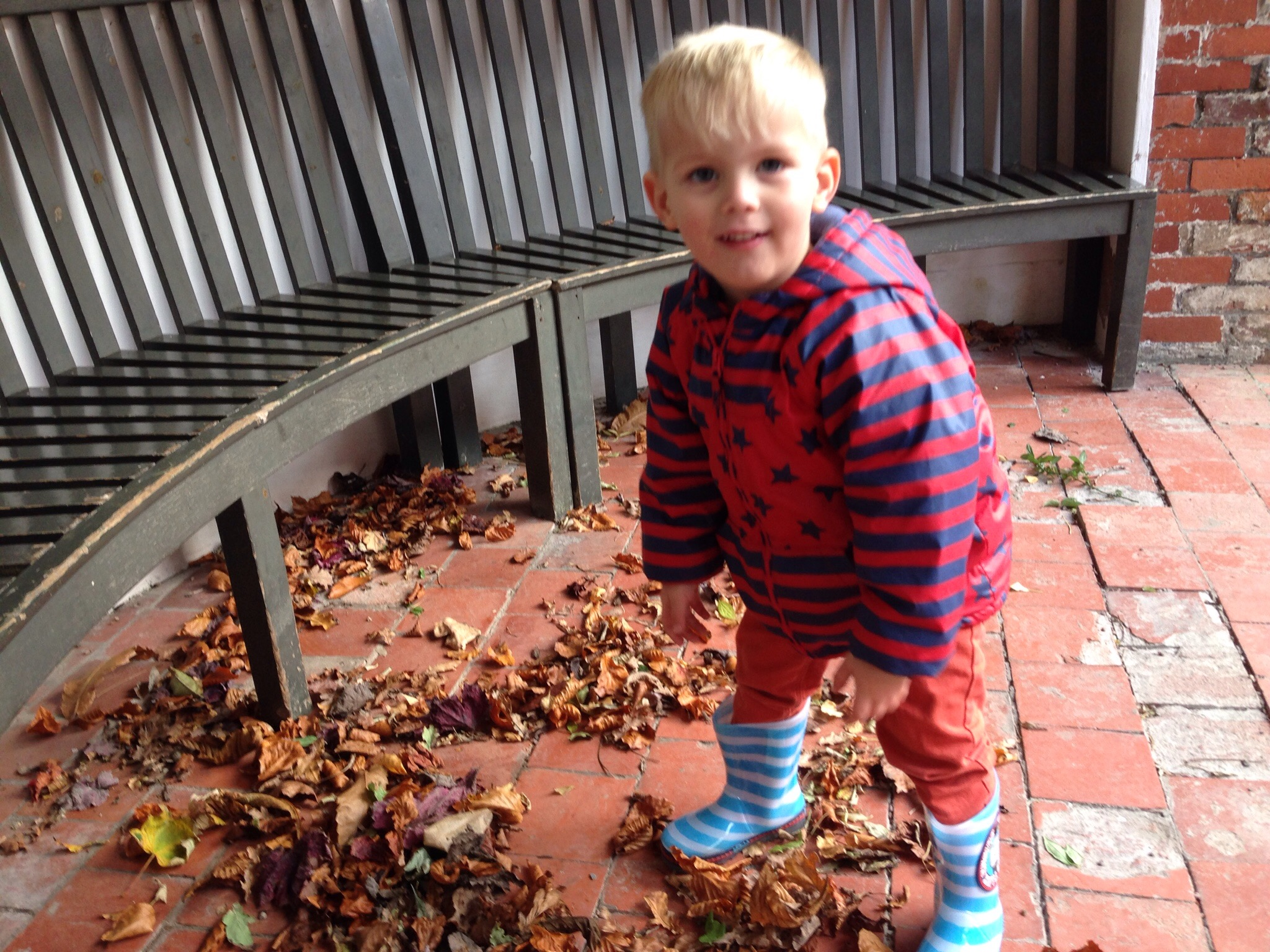 playing with autumn leaves at erddig