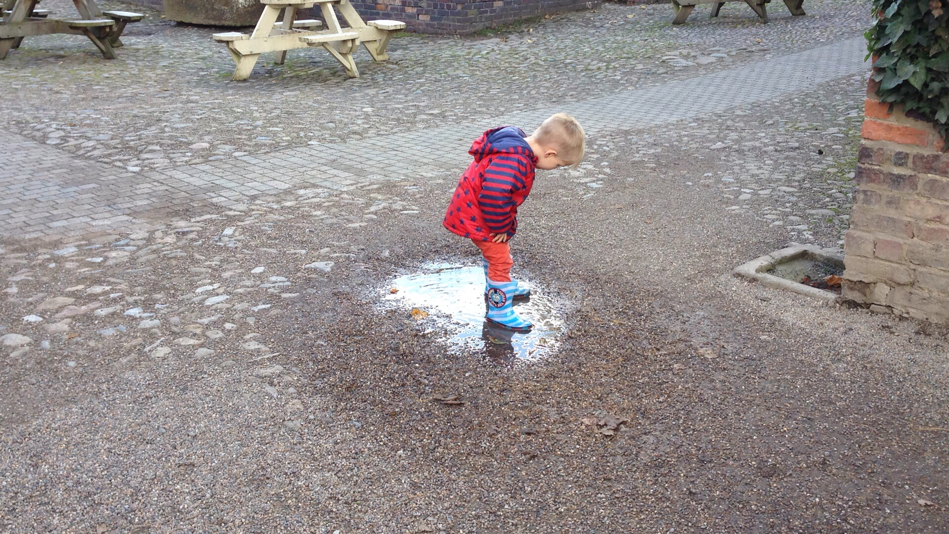 jumping in puddles at erddig