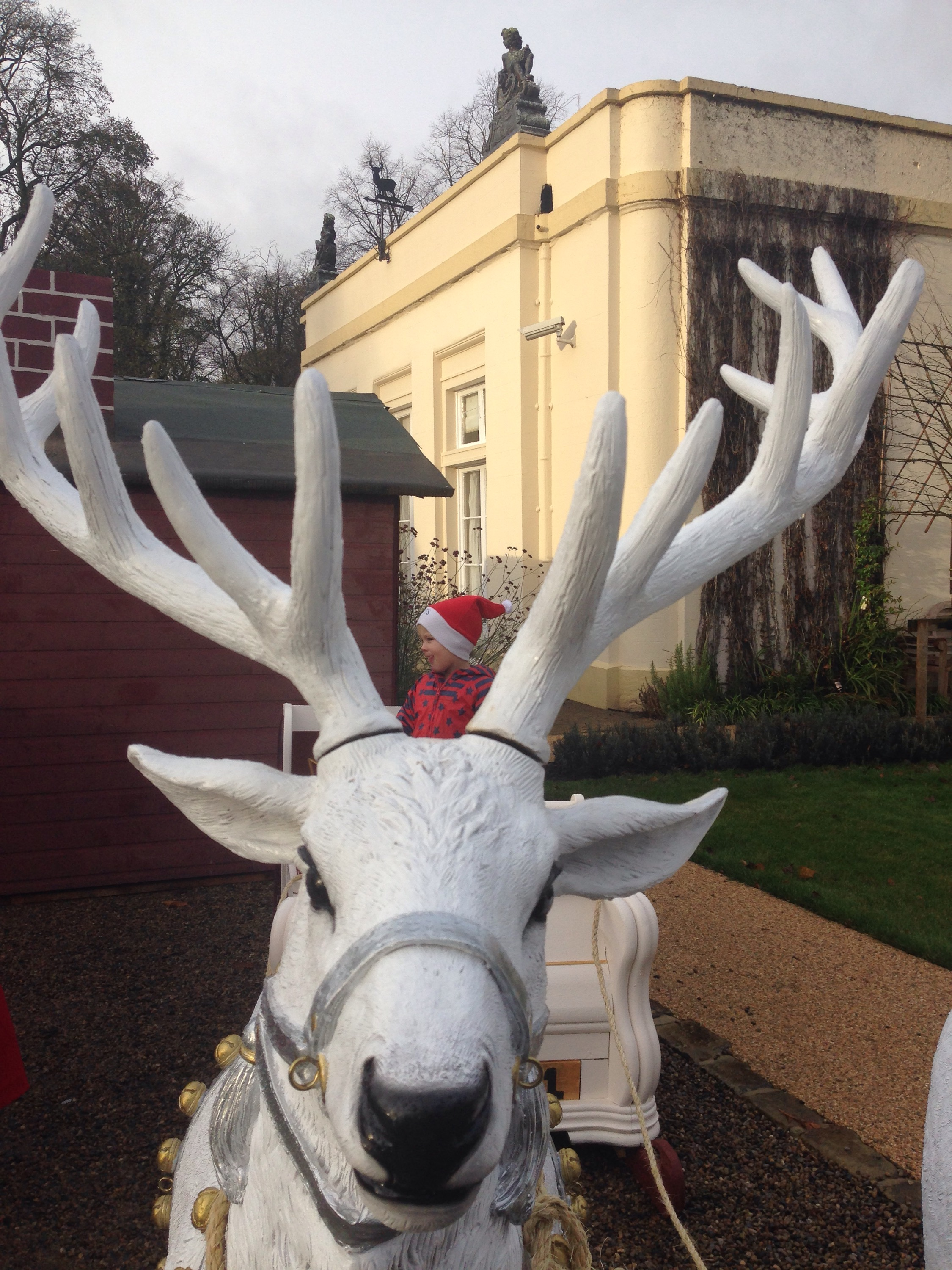 raindeer and sleigh at whitworth hall county durham enchanted christmas